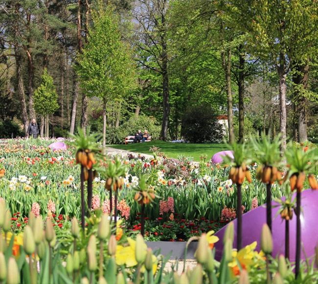 Fuehrung-zum-Tag-der-Gaerten-und-Parks